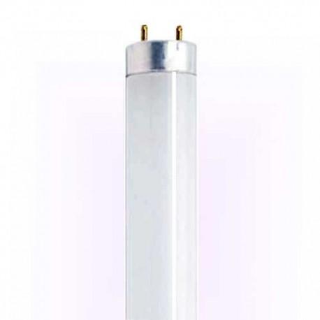 لامپ حشره کش 10 وات